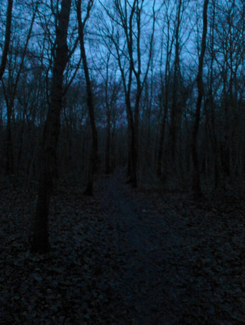 Screen Shot 2014-12-21 at 2.54.56 AM